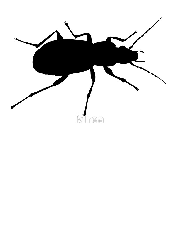 600x800 Black Beetle Silhouette Stickers By Mhea Redbubble