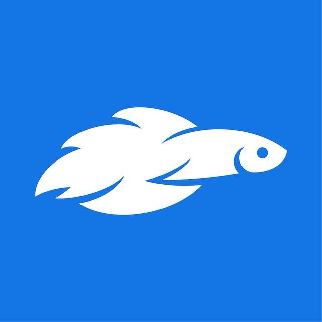 640x640 Betta Fish Mark