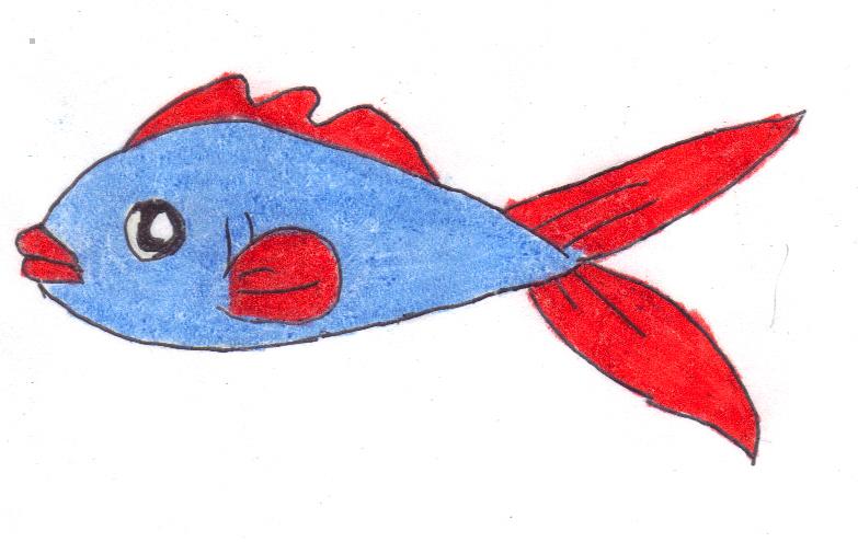 783x495 Betta Clipart Blue Fish