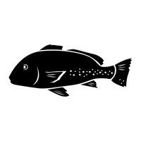 200x200 Shape Shapes Salmon Salmons Angelfish Piranha Blue Tang Clownfish