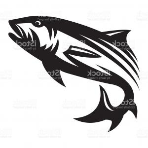 300x300 Stock Illustration Graphic Silhouette Betta Fish Vector