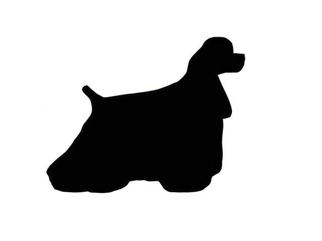 640x480 Can You Identify The Dog Breed By Its Silhouette