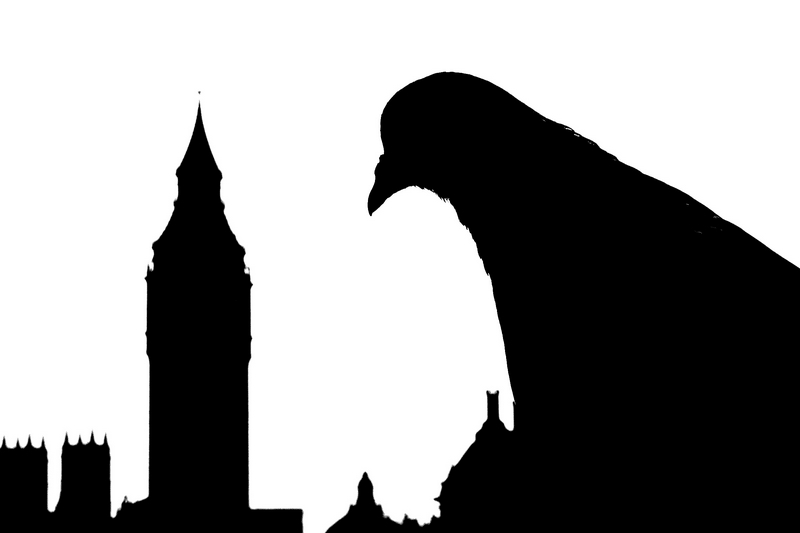 800x533 Big Ben Ii, A Photo From London, England Trekearth