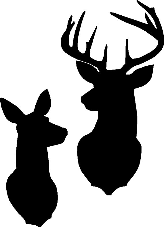 570x785 Buck And Doe Silhouette Stencil Or Decal As Shown In The First