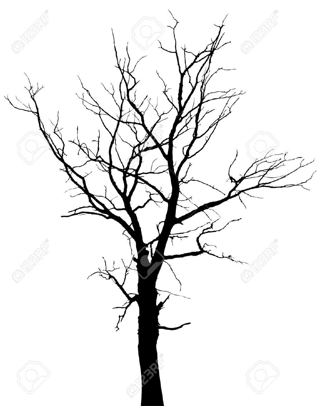 1026x1300 Drawn Dead Tree Big Tree