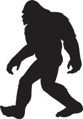 164x235 Silhouette Of A Bigfoot Walking Bigfoot, Silhouettes And Cricut