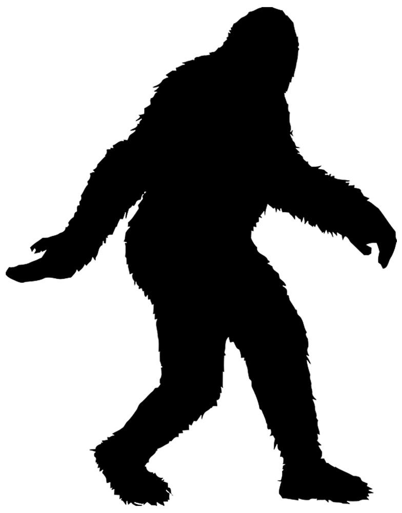 784x1000 Sasquatch Bigfoot Vector By Pairofdocx Redbubble
