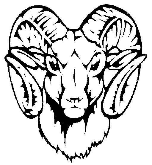 511x552 Gray Bighorn Sheep Clip Art