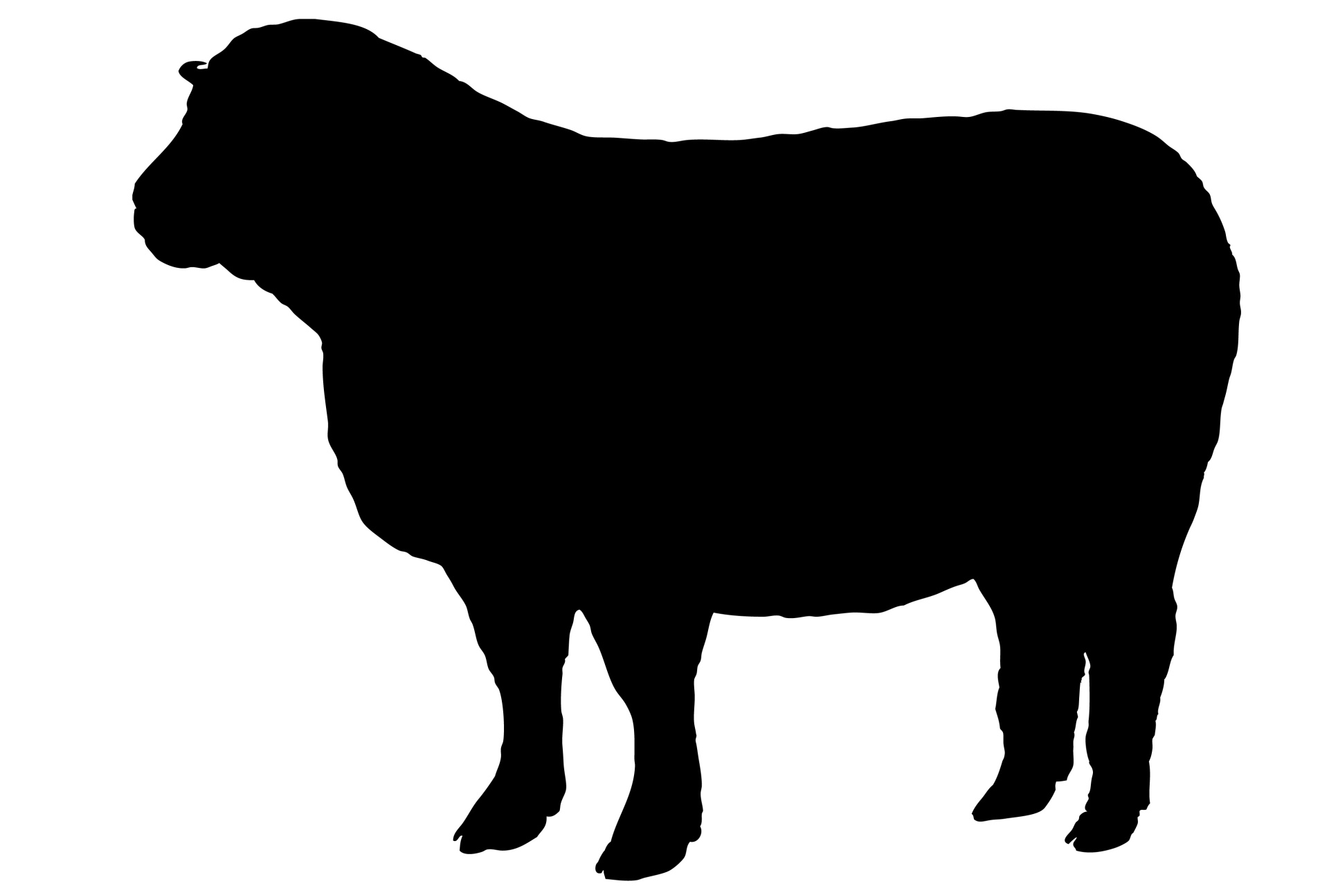 1920x1280 Sheep Black Silhouette Free Stock Photo