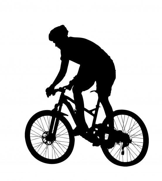 553x615 Mountain Bike Rider Silhouette Free Stock Photo
