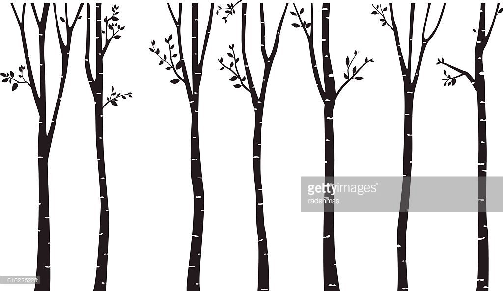 birch tree silhouette at getdrawings com free for personal use rh getdrawings com birch tree leaves vector birch tree vector graphics