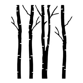 birch tree silhouette vector at getdrawings com free for personal