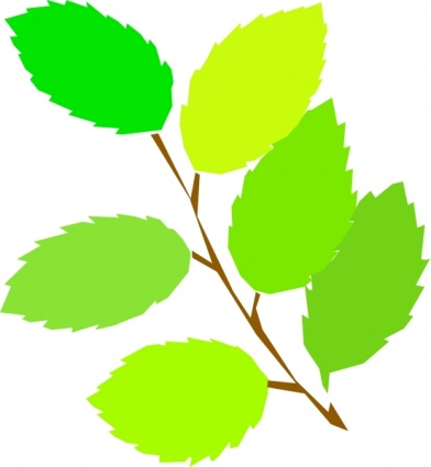 392x425 New Tree Spring Branch Plant Vine Leaves Vector, Free Vector