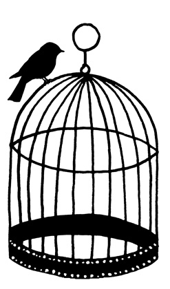 247x420 Bird Cage Silhouette Ink Bird Cages And Silhouettes