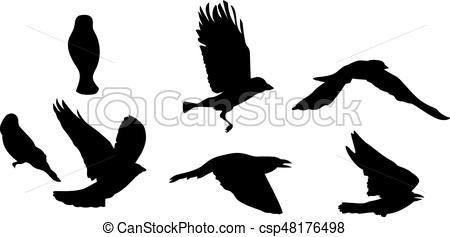 450x237 Black Silhouette Of Bird Flying. Isolated On White Vector Eps