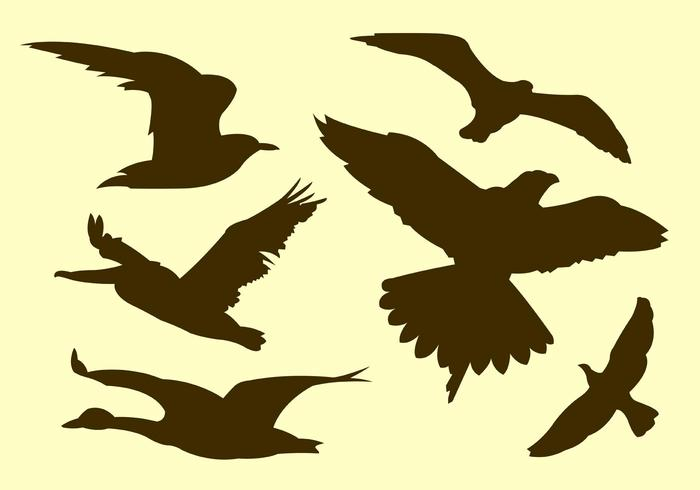 700x490 Flying Bird Silhouette Free Vector Art