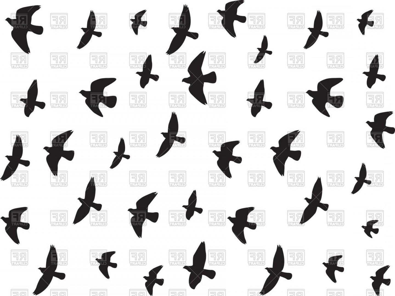 1440x1081 Bird Flying Vector Art Createmepink