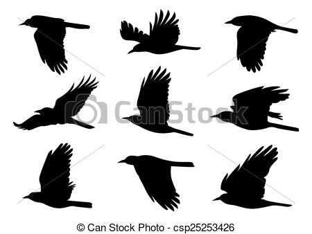 450x338 Birds In Flight Vector Illustration. Birds In Flight