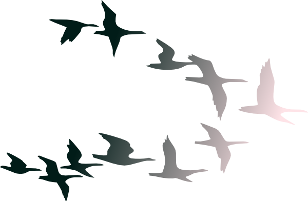 600x392 Clipart Images Of Birds Flying In Flight Clip Art At Clker Com
