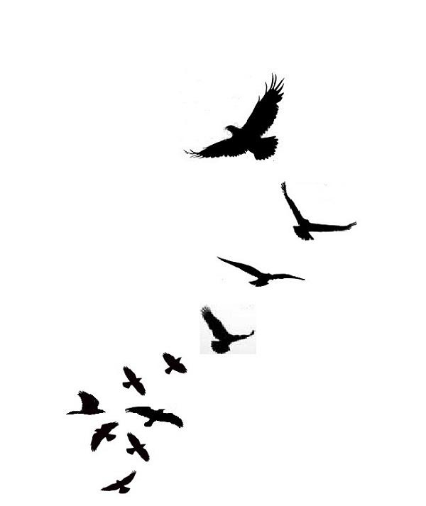 600x713 Bird In Flight Silhouette Tumblr Bird Silhouette Tattoo Gaday