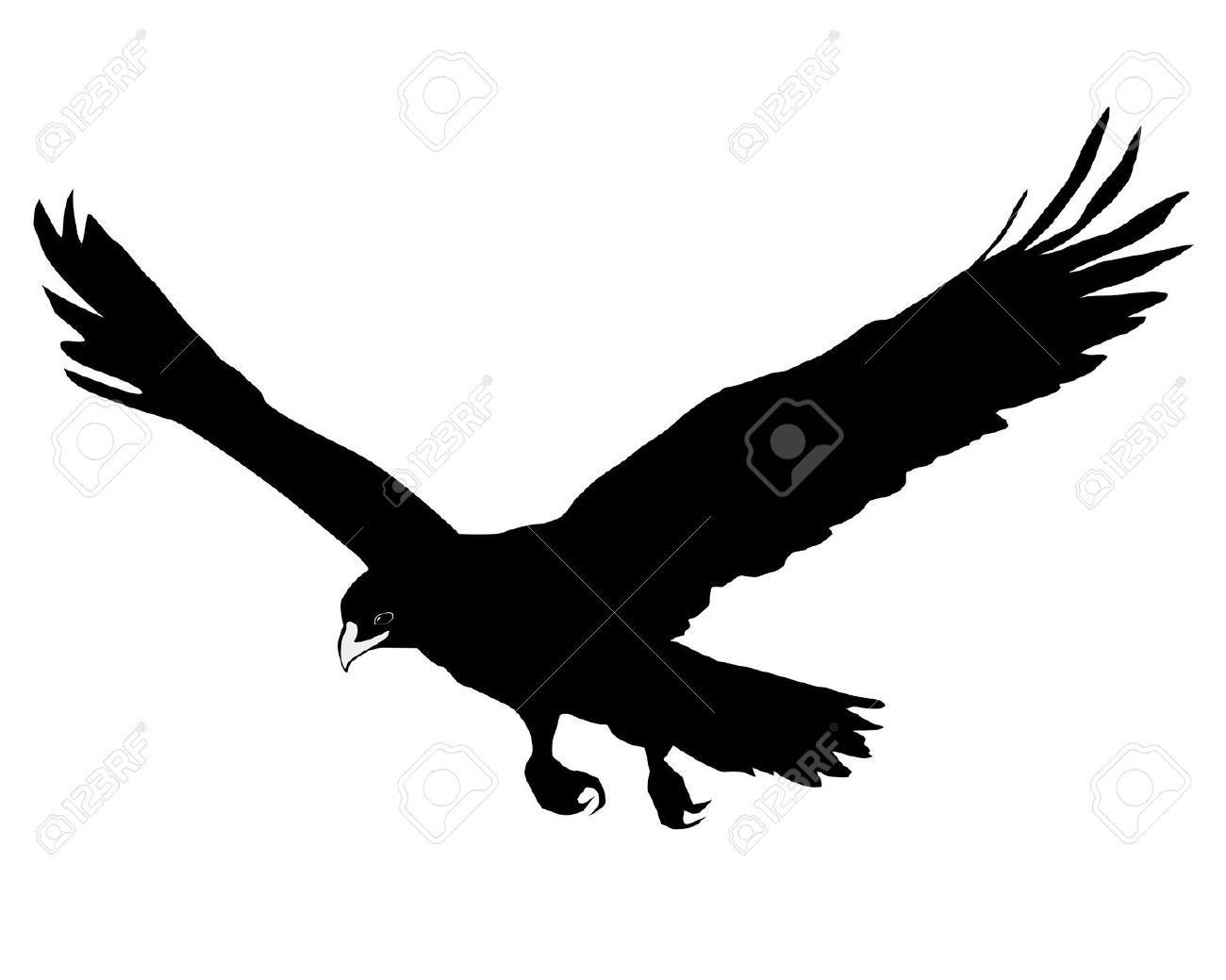 1300x1039 Bird Of Prey Clipart Golden Eagle