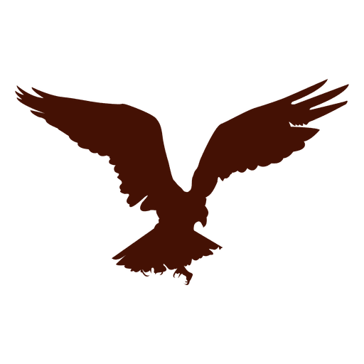 512x512 Bird Of Prey Attacking Silhouette