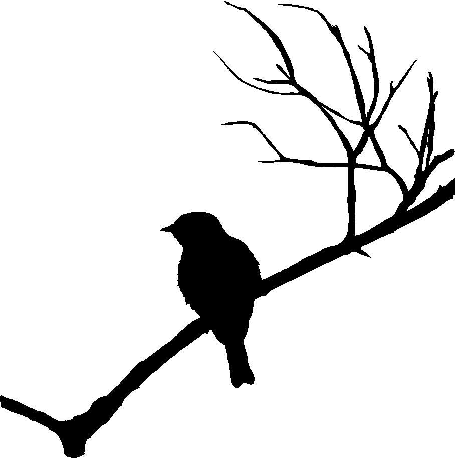 908x913 Image Result For Birds On A Branch Silhouette Wood Crafts