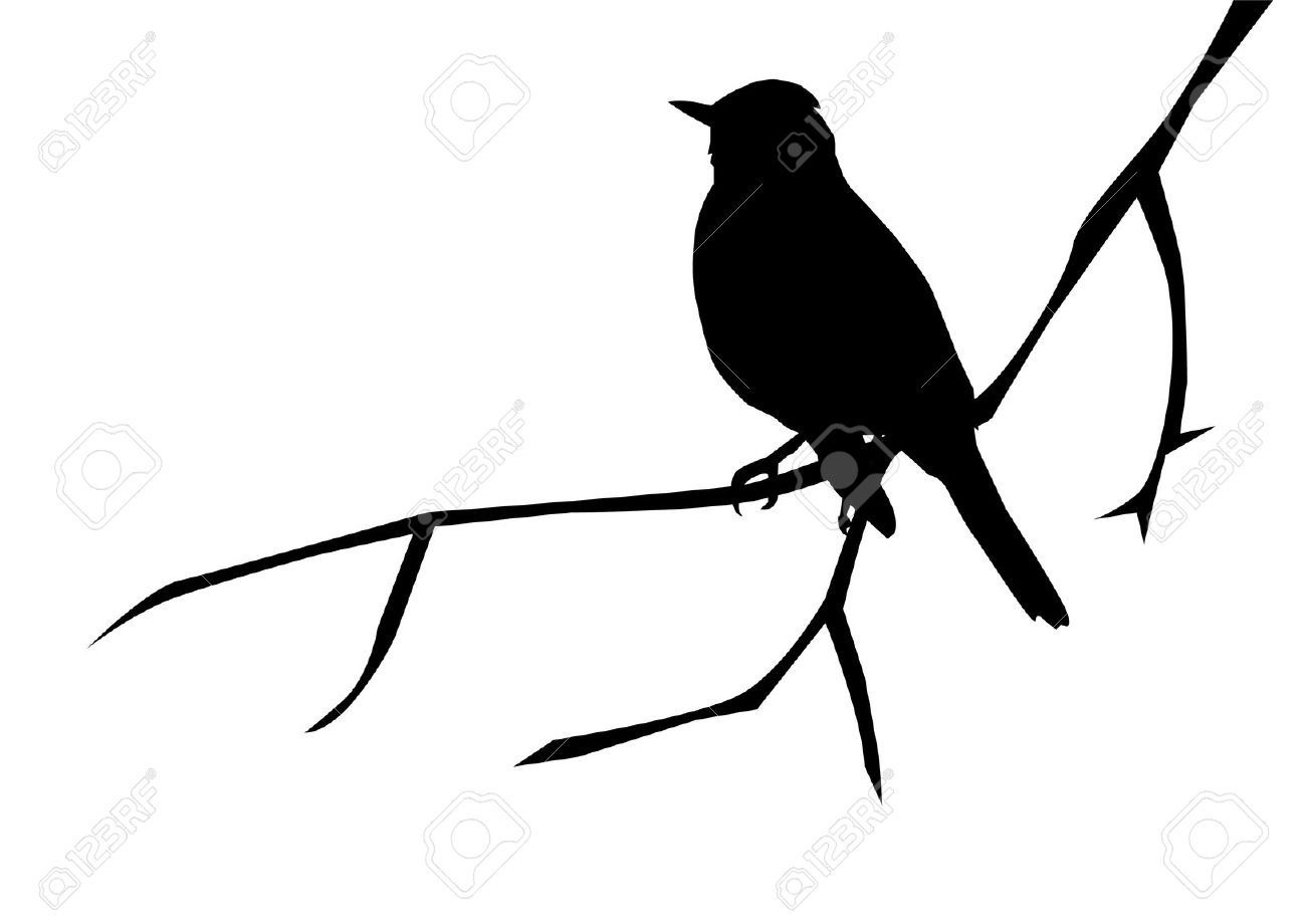 1300x920 Silhouette Of A Bird On The Branch Royalty Free Cliparts, Vectors