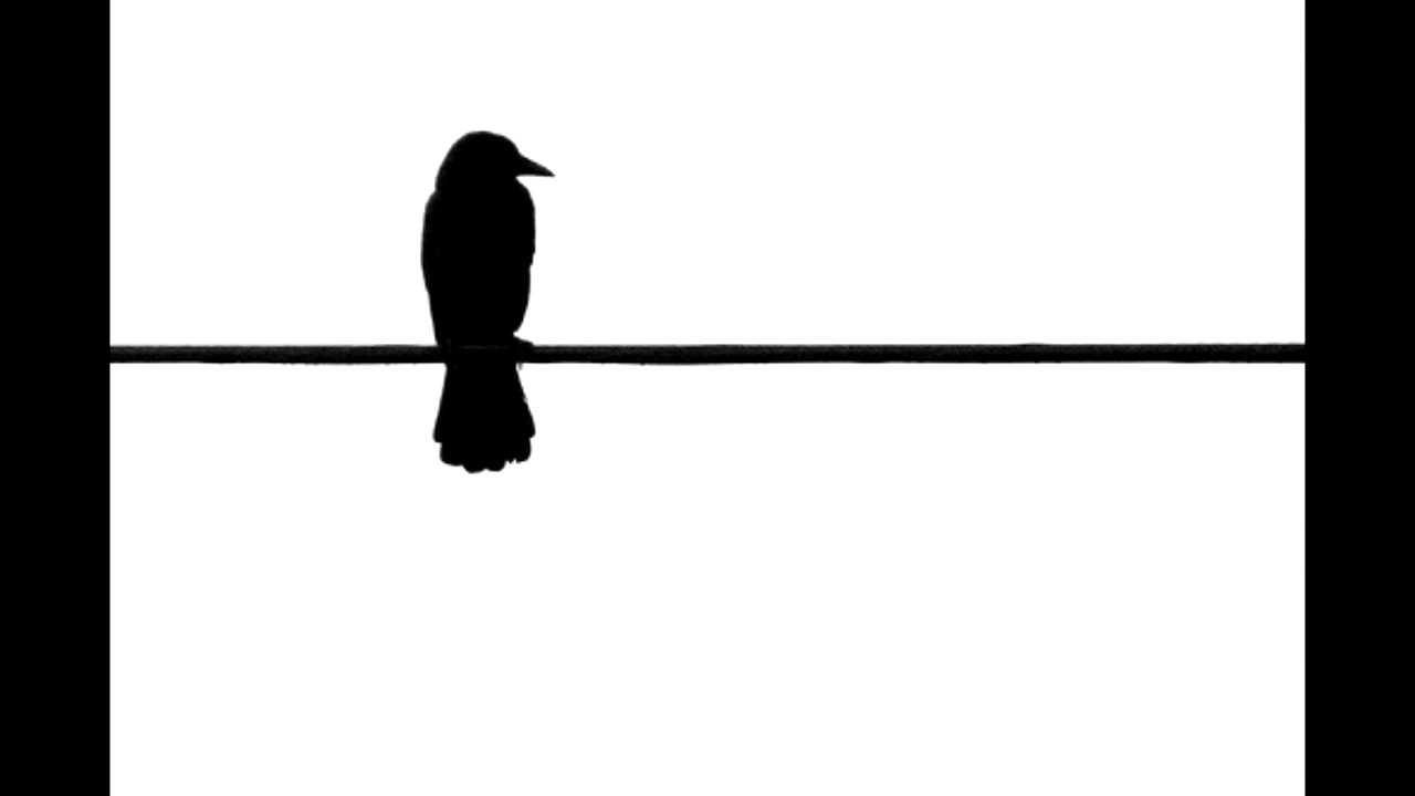 1280x720 Bird On A Wire