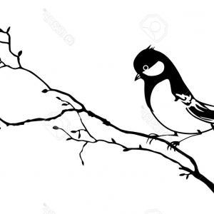 300x300 Royalty Free Stock Photos Vector Lovely Birds Branch File Eps