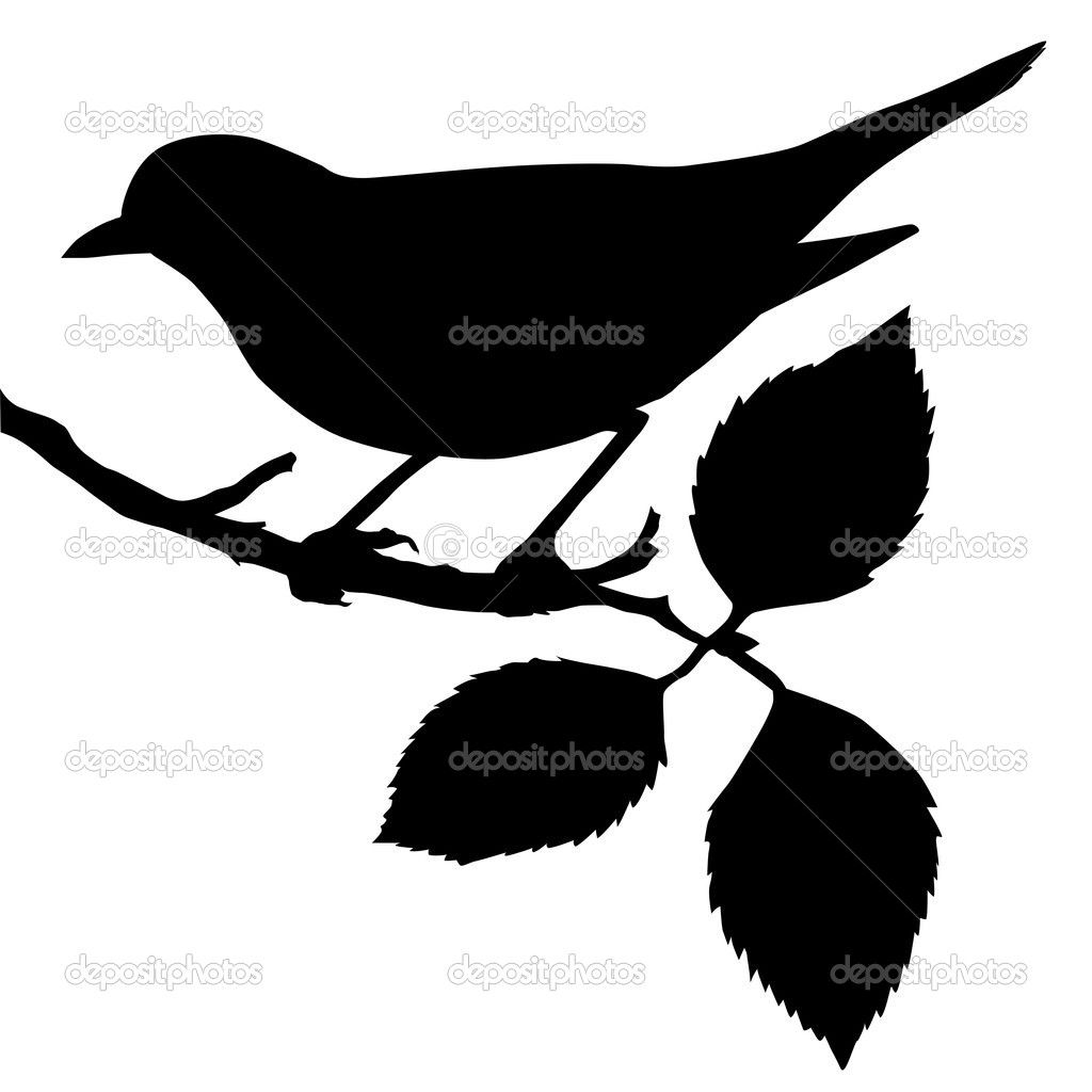 1024x1024 Silhouette Clipart Silhouette Of The Bird On Branch Stock
