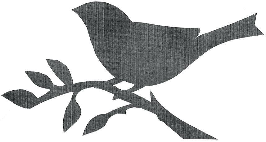 857x459 Best Photos Of Bird On Branch Silhouette Printable Birds On Simple