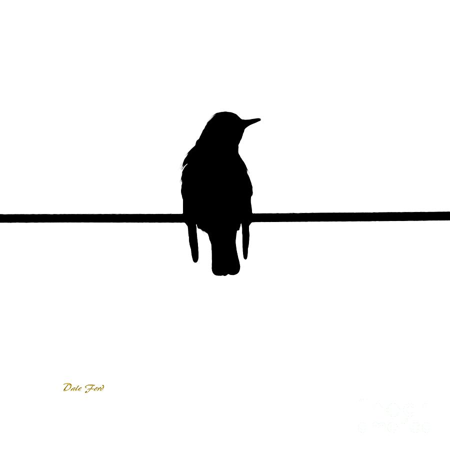 900x900 Like A Bird On The Wire Digital Art By Dale Ford