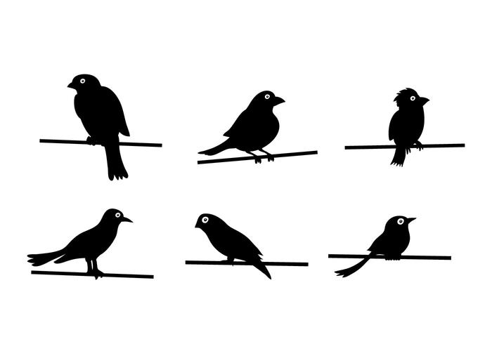 700x490 Bird On Wire Vector
