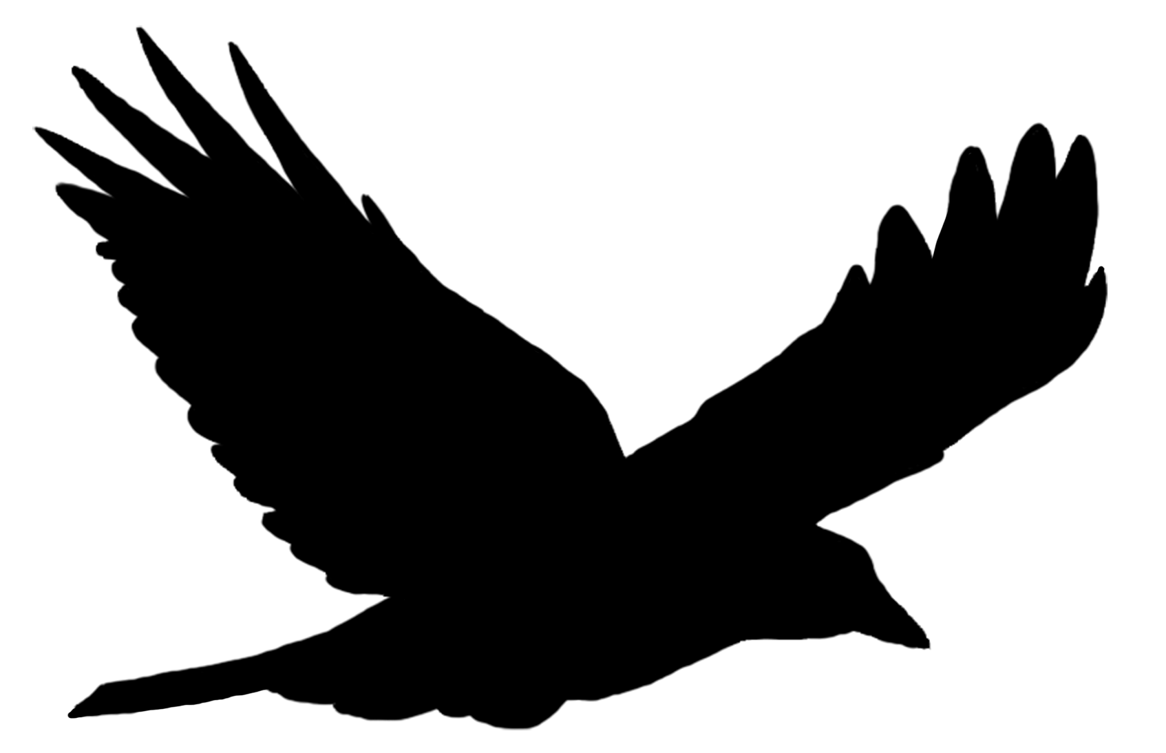 1694x1094 Bird Silhouette Solo Flying Transparent Png