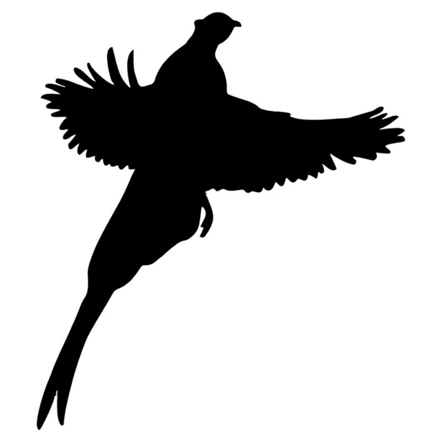 Bird Silhouette Decals