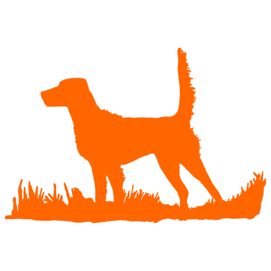 530x530 English Setter (High Tail) Bird Dog Silhouette, Upland Hunting