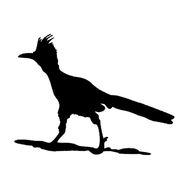 640x640 12.99.8cm Funny Roadrunner Bird Vinyl Car Styling Sticker Animal