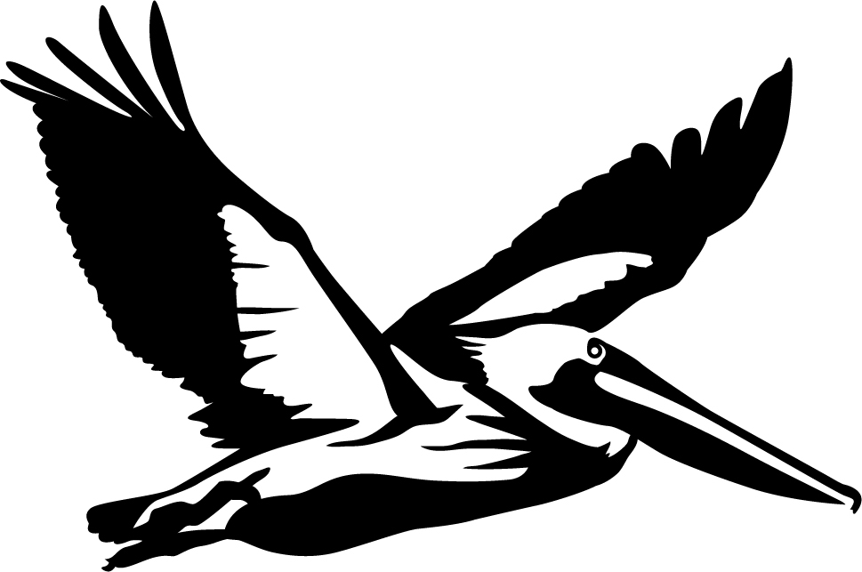 969x643 Flying Pelican Wall Decal
