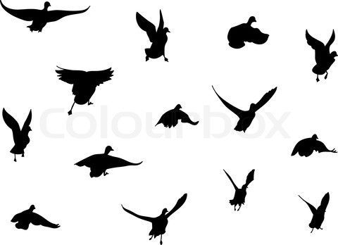 480x348 Black Attractive Silhouette Of Flying Birds Tattoo Inspiration