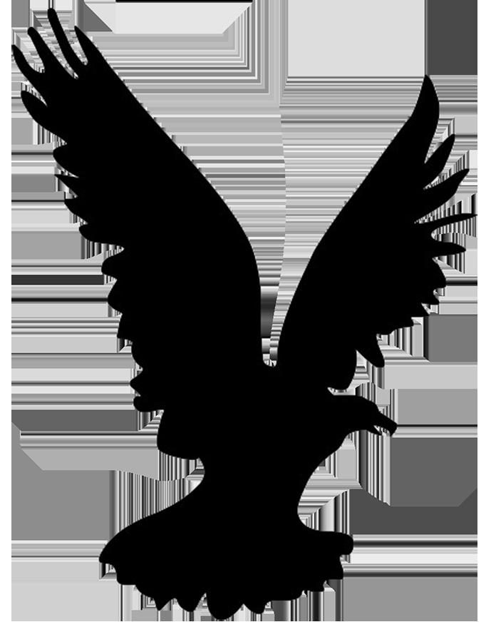 696x886 Black Eagle Clipart Flight Silhouette
