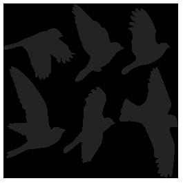 265x265 Flying Birds Wall Appliques Bird Stencil, Wall Appliques