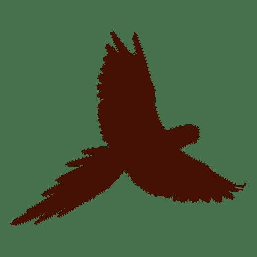 512x512 Pet Bird Silhouette Flying