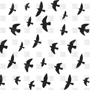 300x300 Vector Silhouette Flock Of Flying Birds Design On White Background