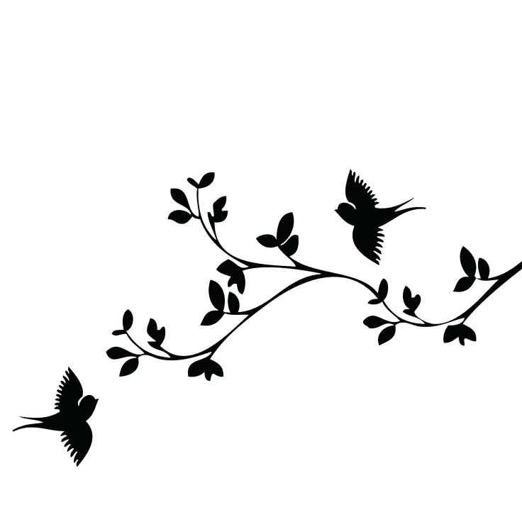 736x736 Bird Outline Stock Images Royalty Free Images Vectors Black