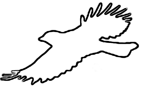 468x311 Bird Flying Outline Clipart Collection