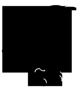 263x288 Bird Silhouettes