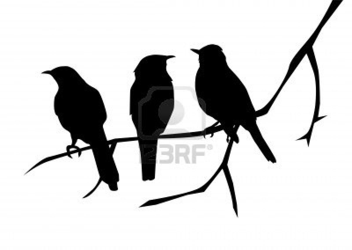 1200x852 Birds Silhouettes On The Branch. Royalty Free Photos, Pictures