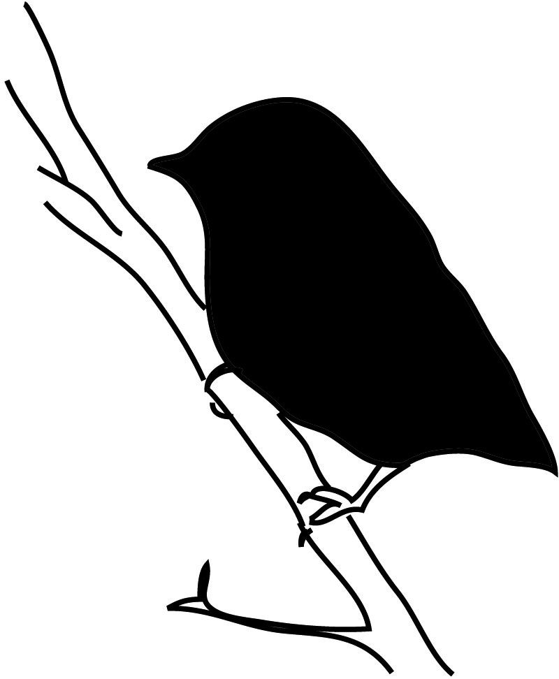 800x972 Bird Silhouette Small Bird On Branch Animals Bird