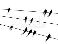 236x177 Bird Stencils Sticker Fauna 28 Birds On The Wire